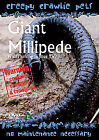 Creepy Crawlie Pets - Giant Millipede (DVDi, 2007)