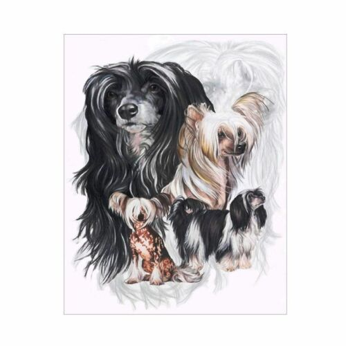 Super Dog Full Drill DIY 5D Diamond Painting Embroidery Cross Stitch Kit Art Pug