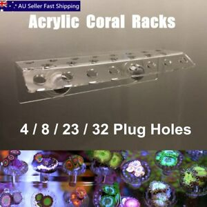 Marine-Aquarium-Reef-Fish-Tank-Acrylic-Coral-Rack-Bracket-Live-Holder-Sucker