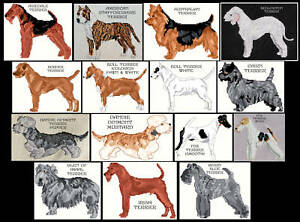 TERRIER-A-K-COUNTED-CROSS-STITCH-PATTERNS