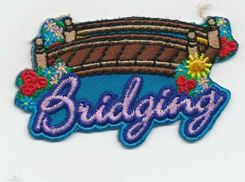Boy Girl Cub blue BRIDGING Ceremony Fun Patches Crests Badges GUIDES SCOUT