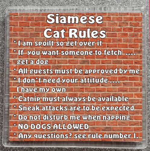 Siamois Chat règles je suis spoilt Get Over It-Mug//Tasse Coaster Cadeau Idéal