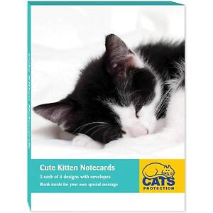 Cats-Protection-12-Cute-Kitten-notecards-Charity-Tabby-Ginger-Black-amp-White-Cat