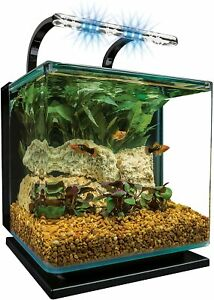 3 or 5 Gallon Fish Tank - Easy Glass Aquarium Kit w/ Hidden Filter & LED Light