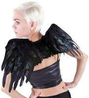Zucker Feather Products Raven Wing, 12.30-inch, Black Iridescent, New, Free Ship