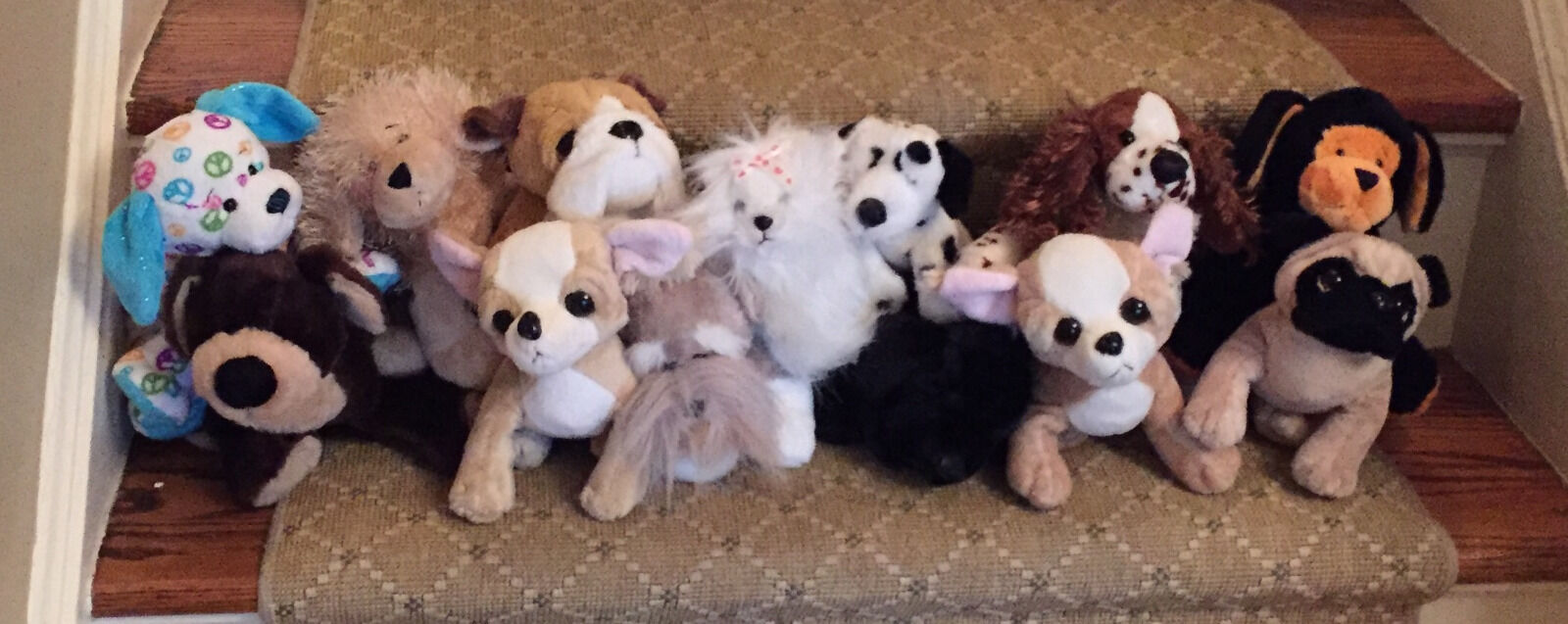 Webkinz lot of 13 Dogs