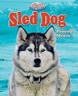 Sled Dog: Powerful Miracle by Stephen Person (Hardback, 2011)