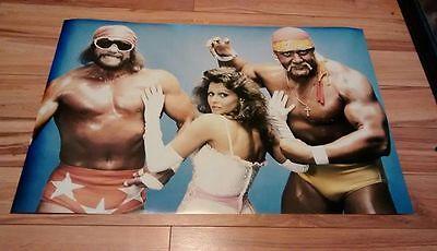 Hulk Hogan Macho Man Randy Savage MEGA POWERS poster WWF WWE