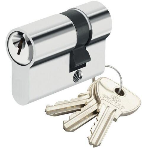 Demi Cylindre de sécurité pour porte barillet 10x30 mm Alpha Bricard 3 clés