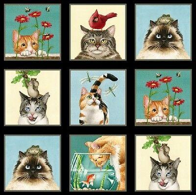 """Curious Cats-Miniatura di gatto """", colore: nero, dimensioni: pannello in tess..."""