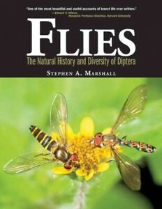 Flies-The-Natural-History-amp-Diversity-of-Diptera-Hardcover-by-Marshall-St