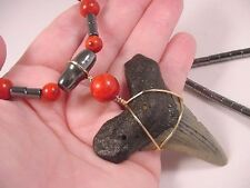 "s267-e) 2-1/2"" fossil MEGALODON Tooth Teeth Red SPONGE CORAL + hematite Necklace"