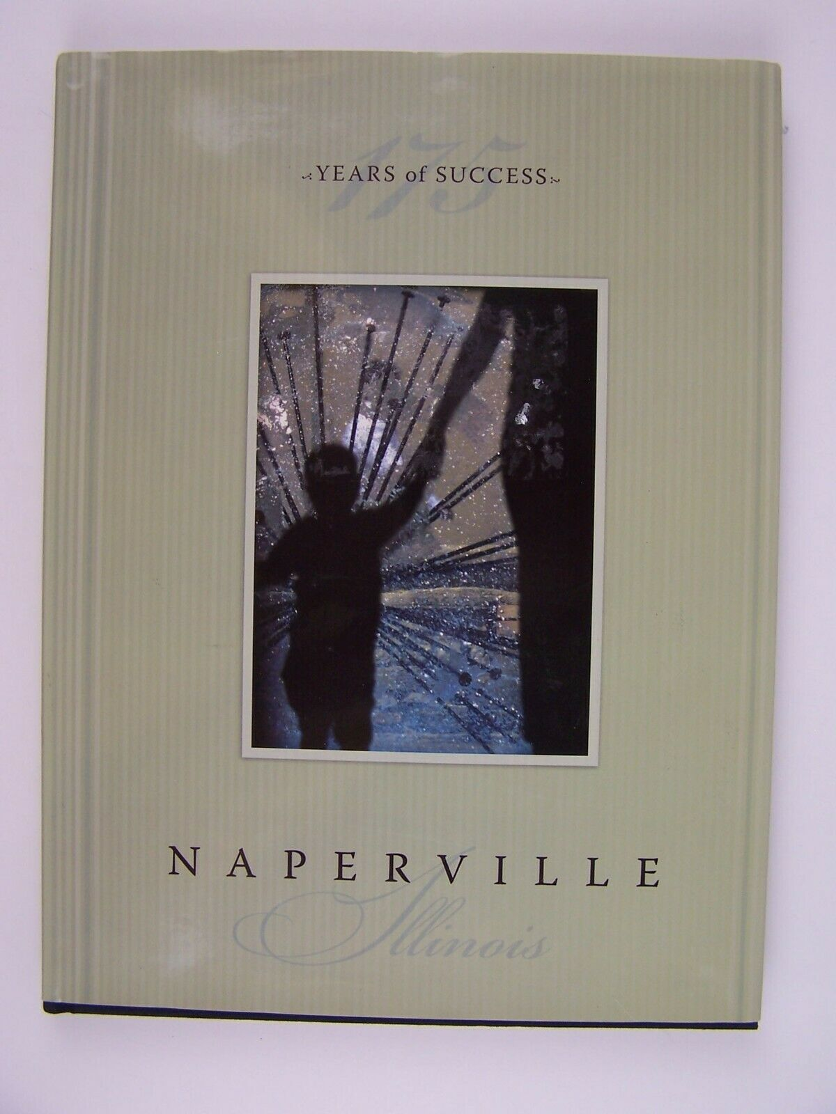 Naperville 175 Years of Success Hardcover