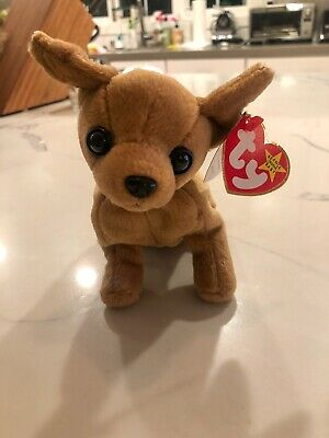 Ty Beanie Babies Tiny The Chihuahua NEW MINT CONDITION