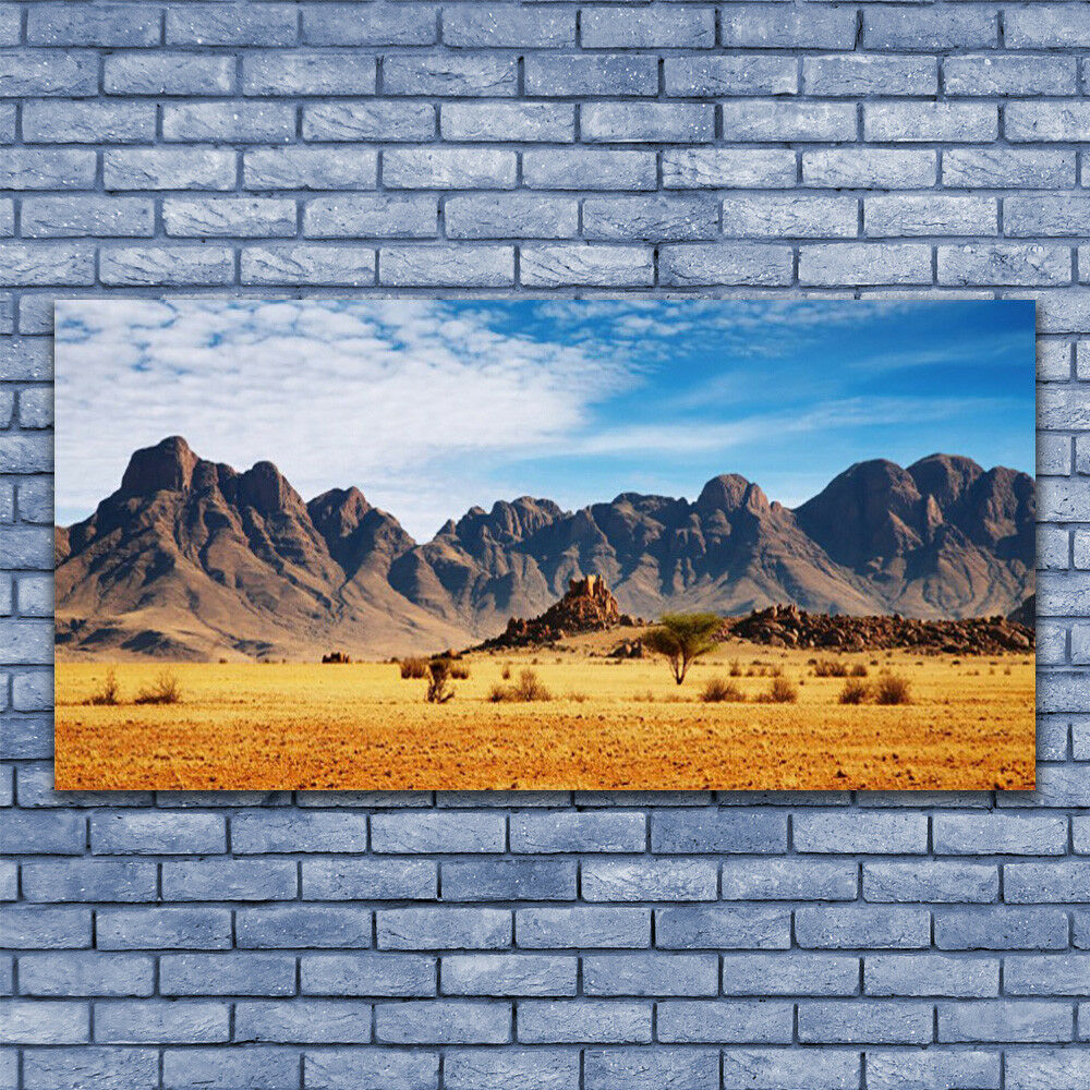 Acrylic print Wall art 140x70 Image Picture Desert Landscape