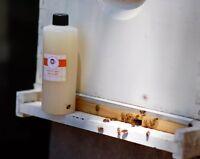 Honey Bee Healthy (Compared To Honey B Healthy) Beekeeping,Essential Oils 16 oz