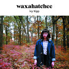 Waxahatchee Ivy Tripp LP Vinyl 2015 33rpm