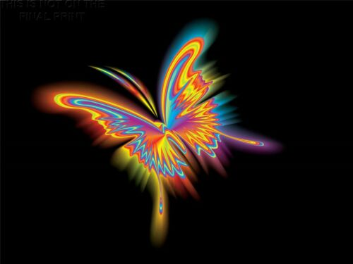 ART PRINT POSTER PAINTING DRAWING COLOURFUL BUTTERFLY GRAPHIC LFMP0999