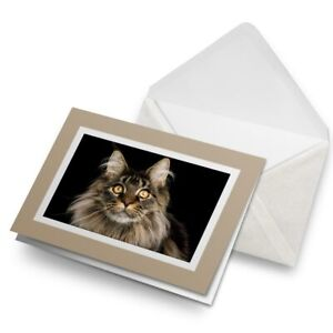 Greetings-Card-Biege-Large-Maine-Coon-Cat-Animal-16225