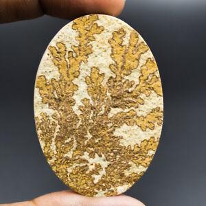 Cts-101-30-Natural-German-Psilomelane-Dendritic-Limestone-Oval-Cabochon-Gemstone