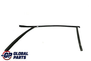 BMW X1 Series E84 Window Guide Seal Gasket Right Front Door O/S 2990308