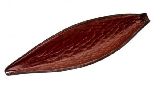 8-12cmDauschoteFuntumia FruchtExotische Deko NaDeco® Canoinha braun ca