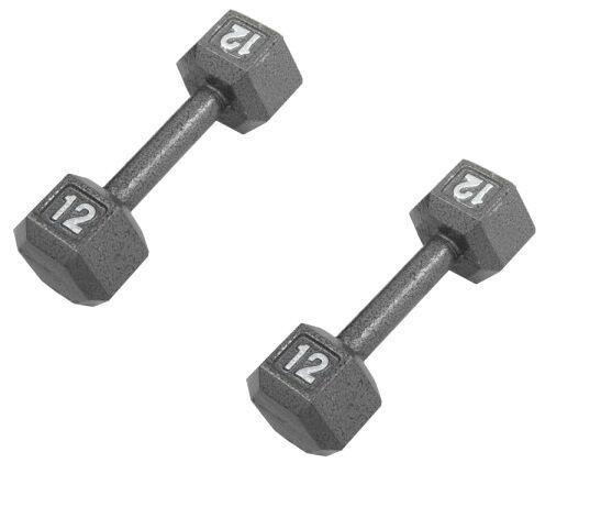 Pair 12lb 12 pound ZON exercise HEX dumbells weight set cast iron lb ZNBK-HEX12B