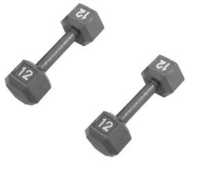 Pair-12lb-12-pound-ZON-exercise-HEX-dumbells-weight-set-cast-iron-lb-ZNBK-HEX12B