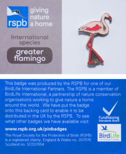 RSPB Pin Badgegreater flamingo international species 00950