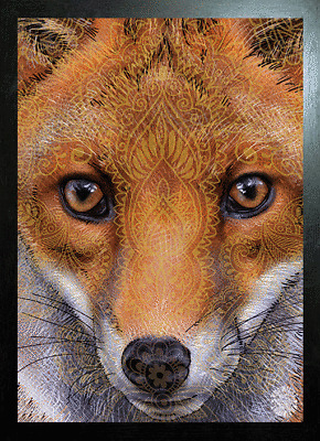 FOX FACE IMPRINT 3D MOVING PICTURE 300mm X 400mm NEW