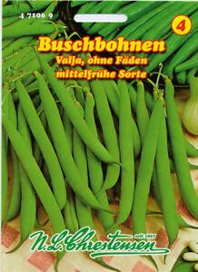 Sarriette,Einjähriges Feuilles,Satureja Hortensis,Légumes,Chrestensen,