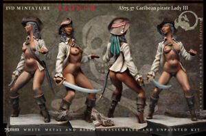 Caribean-Pirate-Femme-III-75mm-1-Figurine-El-Viejo-Dragon-Miniaturas-Pin-Up