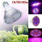 E27 UV/IR 18/50/80W Full Spectrum LED Growing Light Lamp For Flower Plant Veg