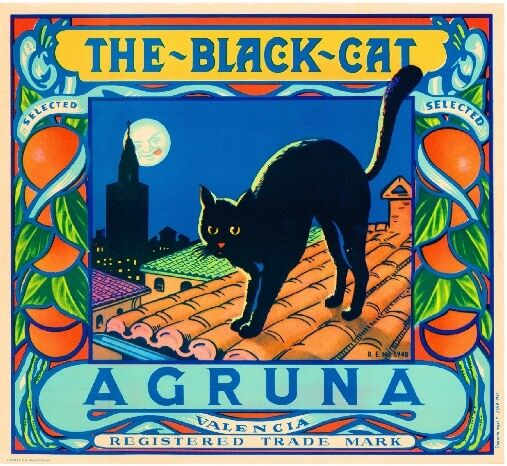 Valencia Spain Spanish The Black Cat Orange Citrus Fruit Crate Label Art Print