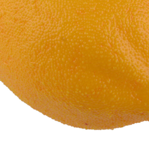 12stk Kuenstlich Zitrone Simulation Obst Kunstobst Dekoobst Fruechte Dekor