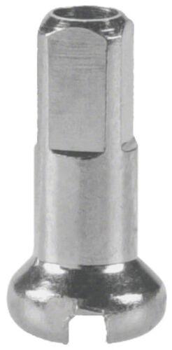 New DT Swiss 2.0 x 12mm Silver Brass Nipples Box of 100