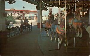 Powell-OH-Columbus-Zoo-Amusement-Park-Carousel-Merry-Go-Round-Postcard