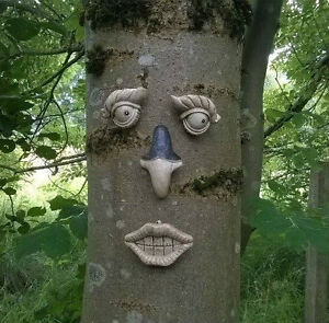 NEW-Novelty-Garden-Tree-Face-Garden-Ornament-Decoration-Shed-Fence-Outdoor-Gift