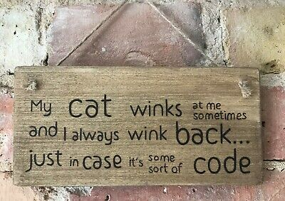 Onpartijdig ** Handmade Cat Sign Plaque In An Oak Stain Finish ** Wood Burning Pyrography ** Straatprijs