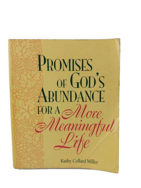 Vintage 1998 Promises of God's Abundance for a More Meaningful Life paperback