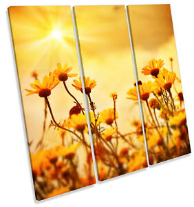 Yellow-Floral-Flowers-Sunset-CANVAS-WALL-ART-TREBLE-Square-Print-Picture