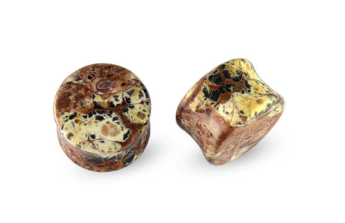 Pair Fossil Stone Plugs Gauges