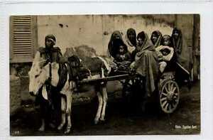 Ga1024-450-Real-Photo-of-Donkey-Cart-CAIRO-Egypt-c1920-VG