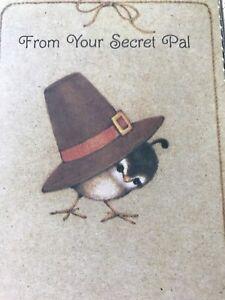 Vintage-Thanksgiving-Day-Card-Hallmark-Baby-Bird-Pilgrim-Hat-Secret-Pal