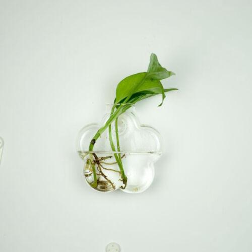Hydroponische Wandbehang Blase Aquarium Fisch Glas DIY Topf Vase Pflanze Dek TPI