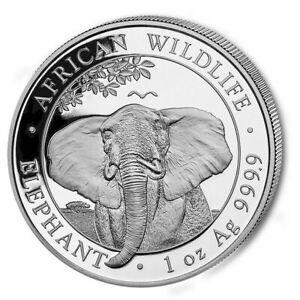 Silbermuenze-Somalia-Elefant-Silber-african-wildlife-2021