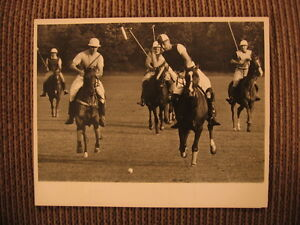 Adie von Gontard at Blind Brook Polo Club Purchase, New York 1952 Horse Photo