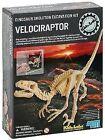 4M Excavation Kits - Velociraptor Skeleton