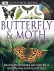 Butterfly & Moth by Paul Whalley (Mixed media product)