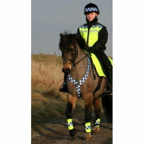 EquiSafety Hacking Winter Reflective Adjustable Polite Horse Riding Neckband